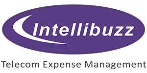 Digital & ICT Cost Optimisation Services for Enterprise – Intellibuzz / Elle.bot KillTheBill